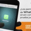 Pantallazos_de_whatsapp_gestion_documental_skinatech